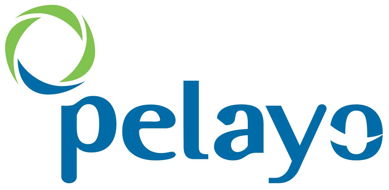 Pelayo logo blue & green circle